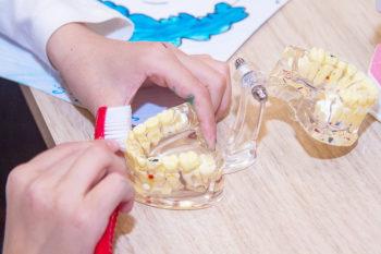 Освоєння правильного чищення зубів